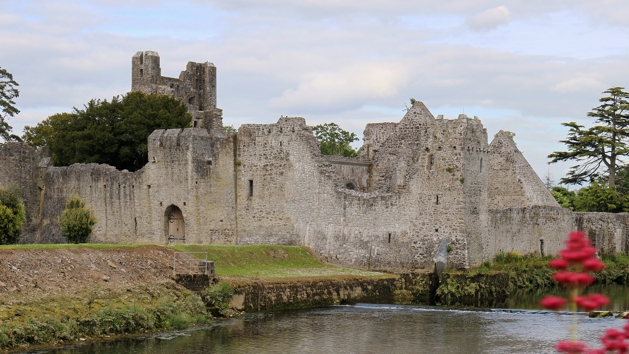 Desmond Castle